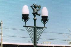 街灯(岐阜県/穂積町)